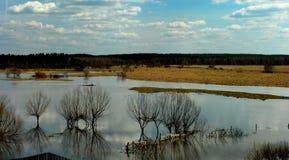 Ландшафт весны Стоковая Фотография RF