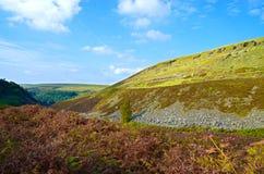 Ландшафт Великобритания сельской местности Woodhead Стоковая Фотография