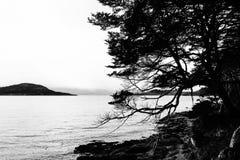 Ландшафт взгляда черно-белый Стоковое Фото