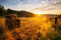 Ландшафт восхода солнца весны Стоковые Изображения RF