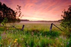 Ландшафт восхода солнца весны Стоковое фото RF