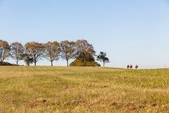 Ландшафт всадников женщин лошадей Стоковое фото RF