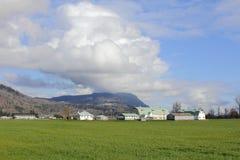 Ландшафт выгона в западной Канаде Стоковые Изображения
