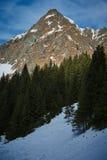 Ландшафт высокой горы на зиме Стоковые Изображения