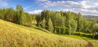 Ландшафт в лесе березы, Россия лета, Урал, Стоковое фото RF