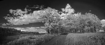 Ландшафт в инфракрасном свете Стоковое фото RF