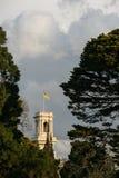 Ландшафт в королевском ботаническом саде Мельбурне, Австралии Стоковые Фото