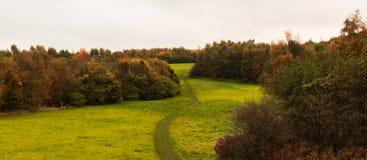Ландшафт в Лидсе Великобритании стоковая фотография rf