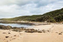 Ландшафт в накидке Conran с лесом и пляжем, Австралией стоковое фото