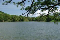 Ландшафт в Никарагуа Стоковая Фотография RF