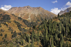 Ландшафт в долине Medeu kazakhstan стоковые фото
