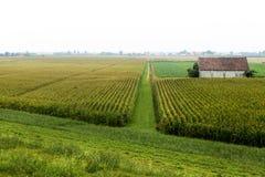 Ландшафт вдоль Рекы По Стоковая Фотография RF
