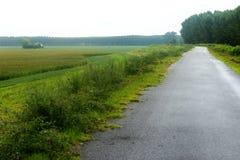Ландшафт вдоль Рекы По Стоковые Фотографии RF