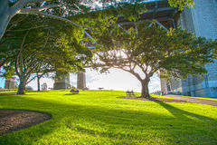 Ландшафт в Сиднее Стоковое Фото