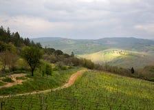 Ландшафт в Тоскане. Стоковые Изображения RF