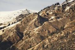 Ландшафт в ущелье Grigoriev kyrgyzstan Стоковое Фото