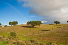 Ландшафт в Alentejo Стоковое Изображение RF