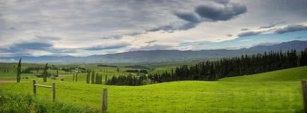 Ландшафт в Fairlie Стоковая Фотография RF