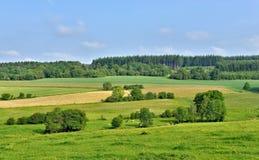Ландшафт в Walloon Стоковая Фотография RF