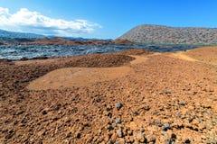 Ландшафт Галапагос Стоковые Фото