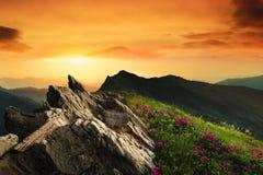 Ландшафт горного пика Стоковое Фото