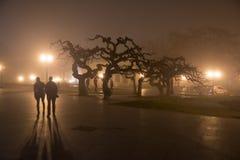 Ландшафт города в тумане Стоковая Фотография RF