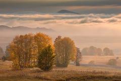Ландшафт горы в осени на туманном утре стоковые изображения rf