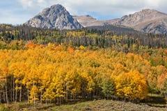 Ландшафт горы в падении Стоковые Изображения