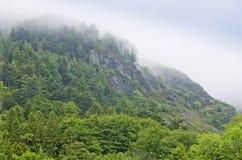 Ландшафт горы в утре лета, холодном тумане утра, Англии, Европе Стоковые Изображения RF