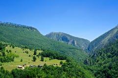 Ландшафт горы в Черногори Стоковые Изображения