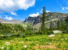 Ландшафт горы в южном Сибире Стоковые Фото