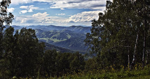 Ландшафт горы лета Стоковое фото RF