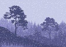 Ландшафт горы зимы рождества Стоковое Изображение RF