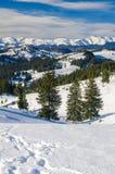 Ландшафт горы зимы Стоковые Изображения RF