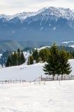 Ландшафт горы зимы Стоковая Фотография