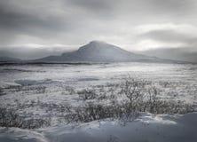 Ландшафт горы зимы Стоковые Фотографии RF