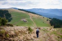 Ландшафт горы, Карпаты Стоковая Фотография