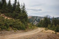 Ландшафт горы, Карпаты Стоковое Изображение RF