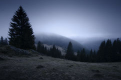 Ландшафт горы на ноче с туманом и деревьями Стоковое фото RF
