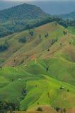 Ландшафт горы на провинции Nan в Таиланде Стоковые Изображения