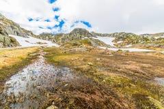 Ландшафт горы Норвегии Стоковое фото RF