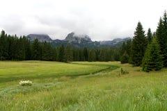 Ландшафт горы около черного озера в Черногории Стоковое Изображение RF