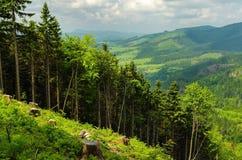Ландшафт горы после весеннего дождя Стоковые Изображения