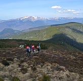 Ландшафт горы прикарпатский Стоковые Изображения