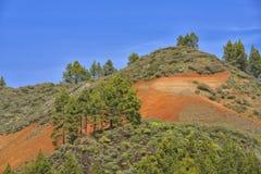 Ландшафт горы с вулканическими почвой и соснами в острове Gran Canaria, Испании Стоковые Изображения RF