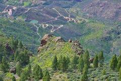 Ландшафт горы с утесами и соснами в острове Gran Canaria, Испании Стоковая Фотография RF