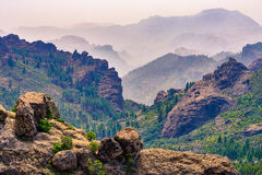 Ландшафт горы с утесами и соснами в острове Gran Canaria, Испании Стоковое Фото