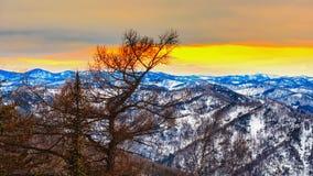 Ландшафт горы Стоковое фото RF