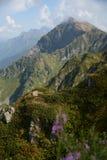 Ландшафт, горы стоковая фотография rf