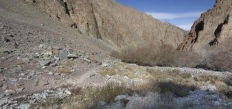 Ландшафт гор Гималаев Стоковые Фото